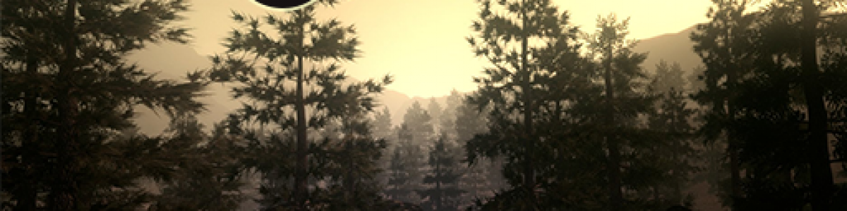 [EU] Survivors Z - Beginner friendly - 25.06.2020 9:20 GMT +2