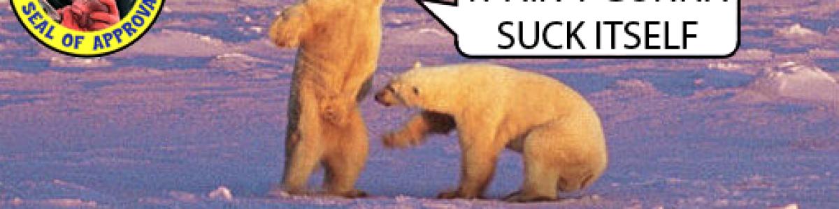 [EU/UK] Bear Island | No BP Wipes | Low Upkeep | Max 4 per grou