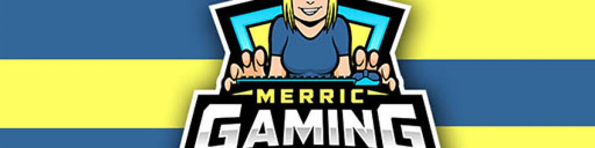 MerricGaming   Gun Game / Aim Server